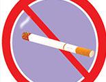 Quiz on the cigarette (2-35)