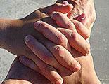 CyberDodo defends the right to reunite families (2-10)